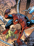 Marvel Adventures Spider-Man No45 Cover: Spider-Man and Doctor Octopus