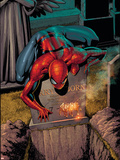 The Amazing Spider-Man No581 Cover: Spider-Man
