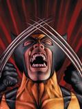 X-Men Origins: Wolverine No1 Cover: Wolverine