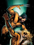 X-Men: The End - Heroes and Martyrs V2 No5 Cover: Wolverine and Sabretooth
