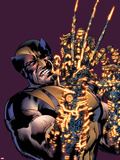 Wolverine: The Best There Is No8 Cover: Wolverine