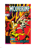 Wolverine No9 Cover: Wolverine