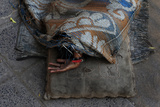 A Woman Sleeps under a Rug on a Sidewalk Along a Street in Kolkata