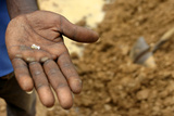 A Villager Holds Some Diamonds Dug Out from a Mine Outside the Village of Sam Ouandja