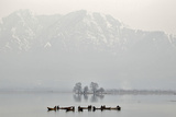 Kashmiri Fishermen Catch Fish from the Waters of Dal Lake on a Cold Day in Srinagar