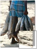 A Fisherman Carries Fish at the Beach in Trincomalee