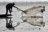 A Kashmiri Fisherman Throws a Net into the Waters of Dal Lake During a Relaxation