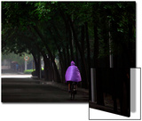 A Man Wearing a Raincoat Rides His Bicycle Down a Tree-Lined Street on a Rainy Day