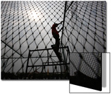A Worker Fixes the Net onto a Cage