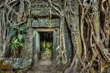 Ancient Stone Door and Tree Roots, Ta Prohm Temple, Angkor, Camb Reproduction d'art par F9photos