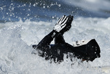 A Man Surfs on His Back Dressed as a Skeleton During the Zj Boarding House Halloween Surf Contest