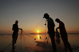 Fishermen are Silhouetted Against the Setting Sun While They Clear their Net after Fishing