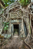 Ancient Stone Door and Tree Roots  Ta Prohm Temple  Angkor  Camb