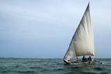 Fishermen Sail their Boat