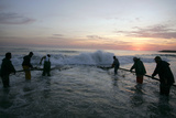 Fishermen Retrieve their Net from the Sea Along the Caparica Coast in Central Portugal