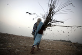 A Woman Carries Firewood at a Garbage Dump on the Outskirts of New Delhi