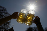 People Pose for a Photograph as They Toast with Beer on a Sunny Day in Munich's English Garden