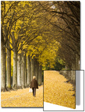 A Woman Walks During an Autumn Afternoon in De Valency Public Park in Lausann