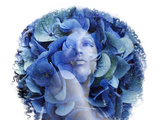Double Exposure Portrait Afrian Woman with a Flowers Beauty Con