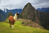 Machu Picchu  Peru  UNESCO World Heritage Site One of the New S