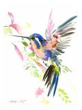 Hummingbird Flying Reproduction d'art par Suren Nersisyan