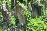 Jewish Cementery  Trebic (Unesco)  Czech Republic