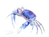Blue Crab 2 Reproduction d'art par Suren Nersisyan