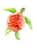 Sea Turtle Red-Green
