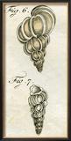 Illustration of Turbo Scalaris  1790