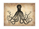 Vintage Octopus