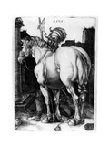 The Large Horse  1509