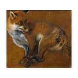 Fox with Legs Tied  by Alexandre-Francois Desportes (1661-1743)  France  18th Century