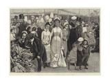 A Flower Show at the Royal Botanic Society's Gardens  Regent's Park