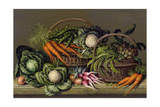 Basket of Vegetables and Radishes  1995