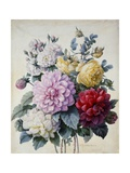 Bouquet of Flowers  Dahlias and Roses  Published C1830-40 (Stipple Hand Coloured)
