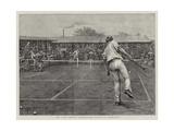 The Lawn Tennis Championship Match at Wimbledon