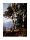 Woodland Landscape  C1850