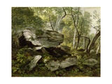 Study from Nature: Rocks and Trees  C1856