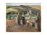 Picking Potatoes  1893