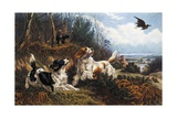 Woodcock Hunting  1880