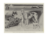 Sketches at the Ladies' Kennel Association's First Show  at the Ranelagh Club  Barn Elms