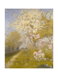 Apple Blossom at Dennemont  1893