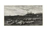 Le Grand Parc a Moutons  1862