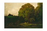 A Pond in the Morvan  1869