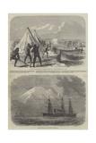 A Surveying Party in Terra Del Fuego