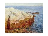 Cliff Rock  Appledore  1903