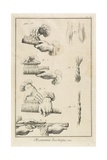 Carding and Combing (Plate II)  1762