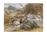 Mountain Pass at Bettws-Y-Coed  1851