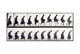 Motion Study  C1872-1885