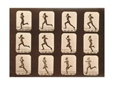 Image Sequence of Athletes Running  'Animal Locomotion' Series  C1881